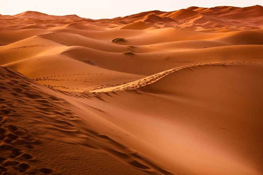 dawn desert dry dune